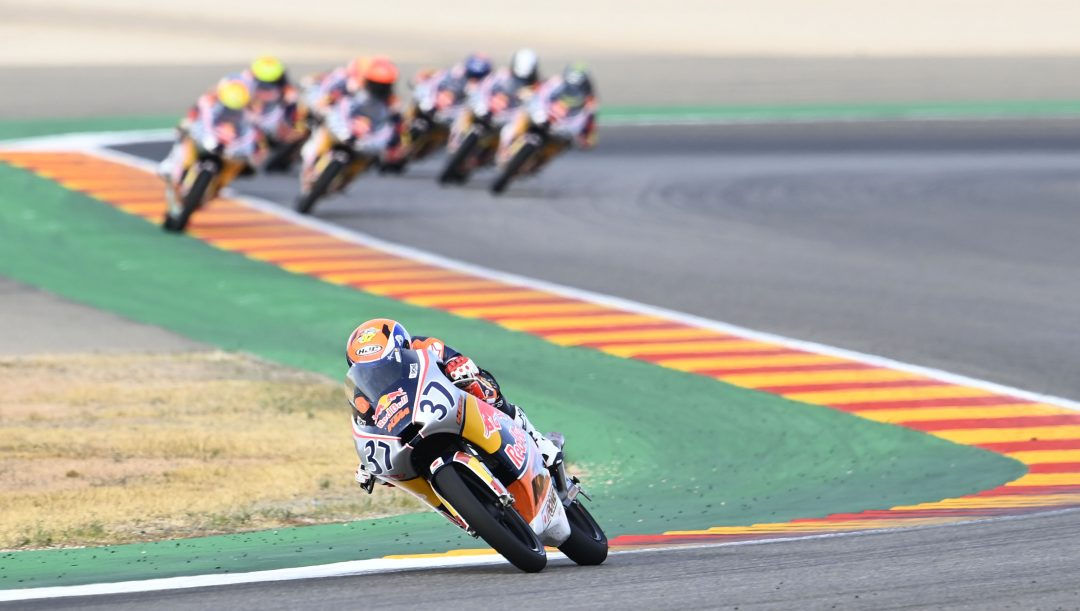 Pedro Acosta Red Bull Rookies Cup