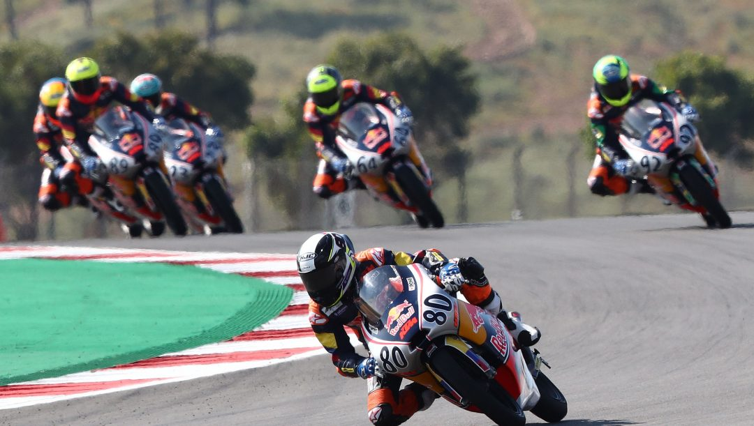 david alonso red bull rookies cup